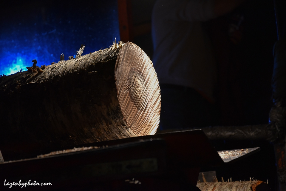 log piece after being cut in wood processor.