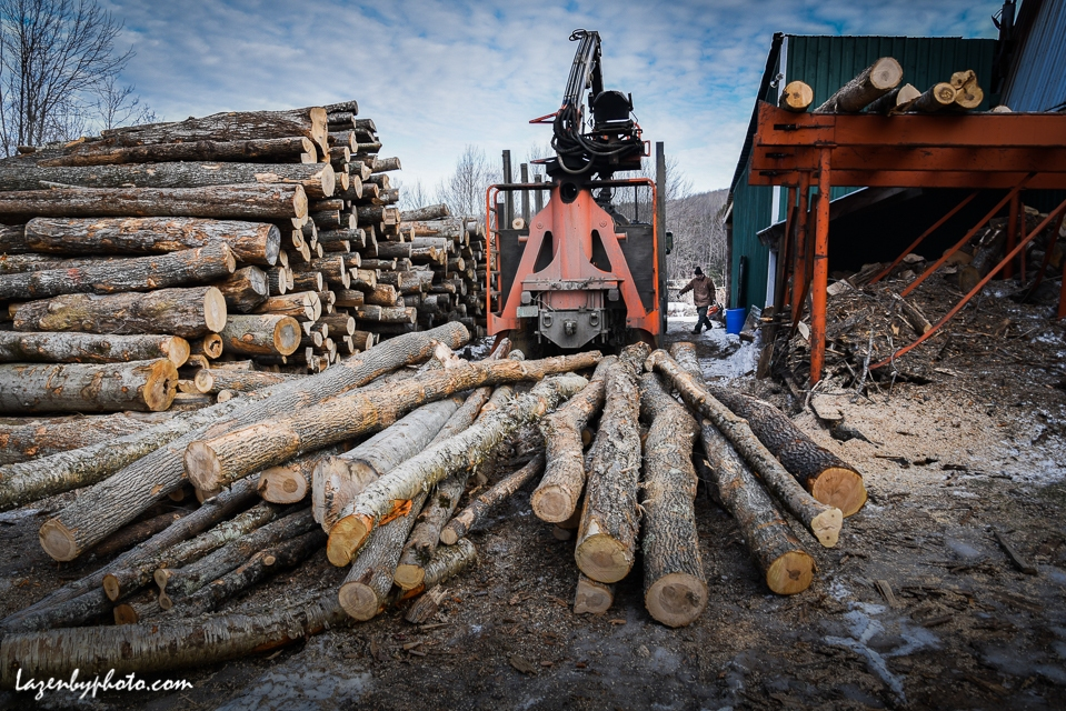 Roger Chaloux and logs to be loaded onto wood processor rack.