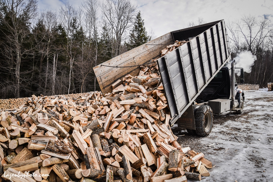 Dumping a load of cord wood to be stacked over the winter, Chaloux Brothers Firewood, Williamstown, VT.