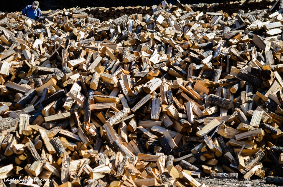 Hector Chaloux, stacking wood, springtime, Chaloux Brothers Firewood, Williamstown, VT.