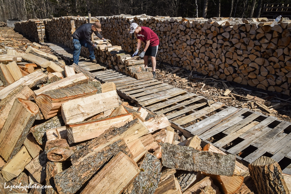 Roger Chaloux and assistant stack wood. (can get name of assistan.)