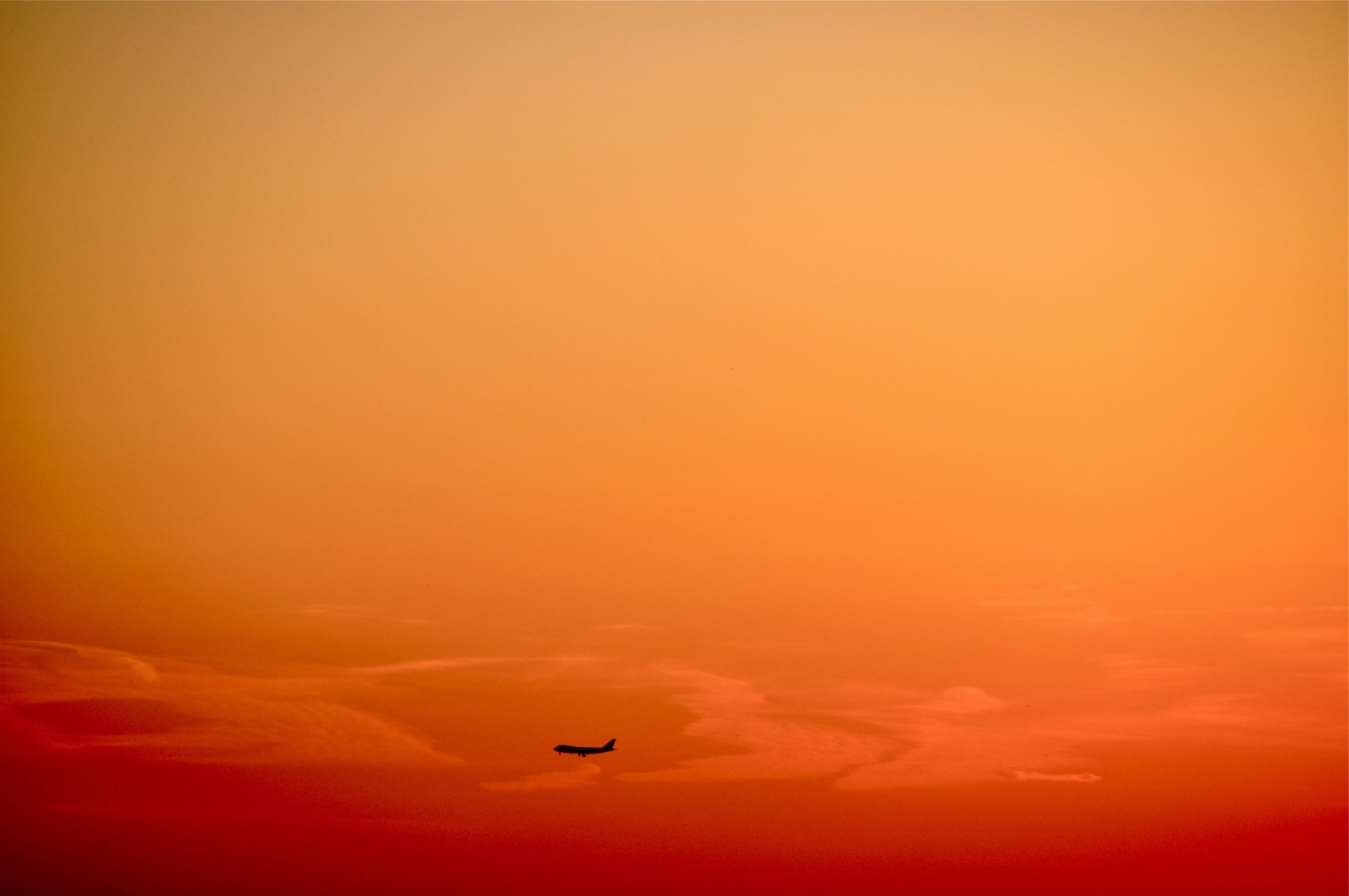 c82-Plane1meg