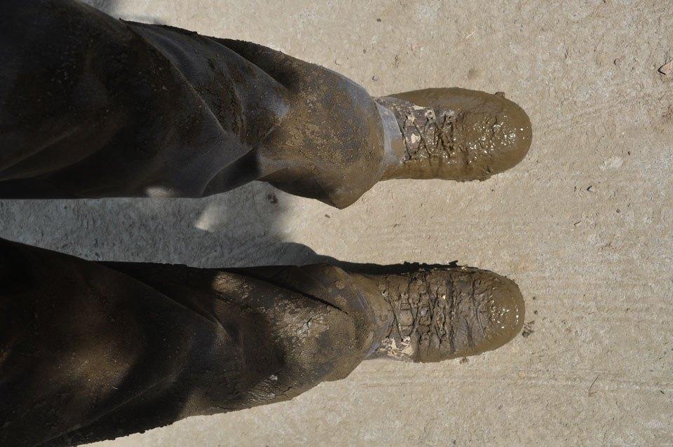 MuddyBts