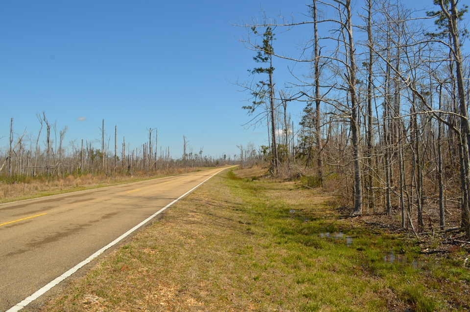 An April 2011 tornado along the Natchez Trace Parkway in Mississippi left a swath of destruction more than 20 miles long.